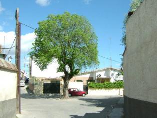 ÁLAMO, calle del